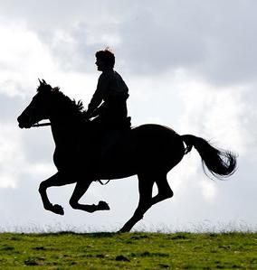 War Horse film still