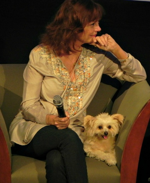 Susan Sarandon and her dog Penny at the Traverse City Film Festival 2012 | Jane Boursaw Photo