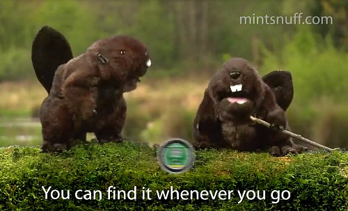 Mint Snuff Beavers