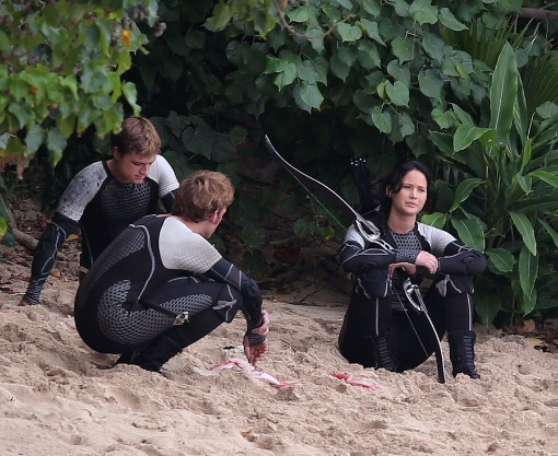 Hunger Games Catching Fire Arena