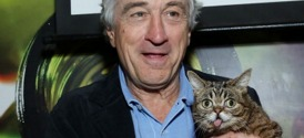 Robert DeNiro and Lil Bub