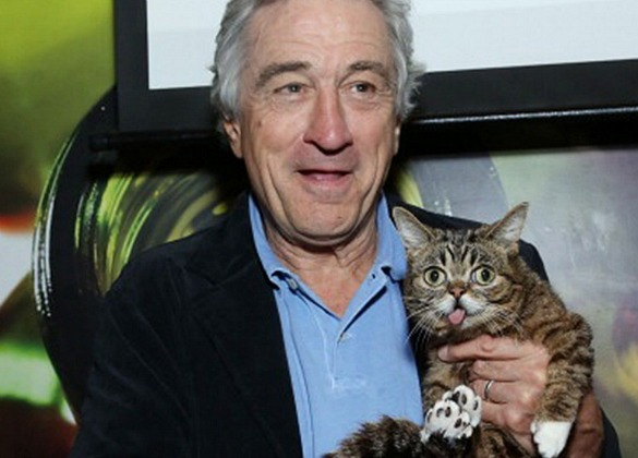Robert DeNiro and Lil Bub the Cat at the Tribeca Film Festival |