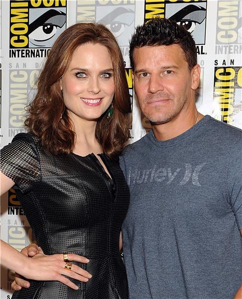 comiccon 2013 bones stars dish about season 9 david