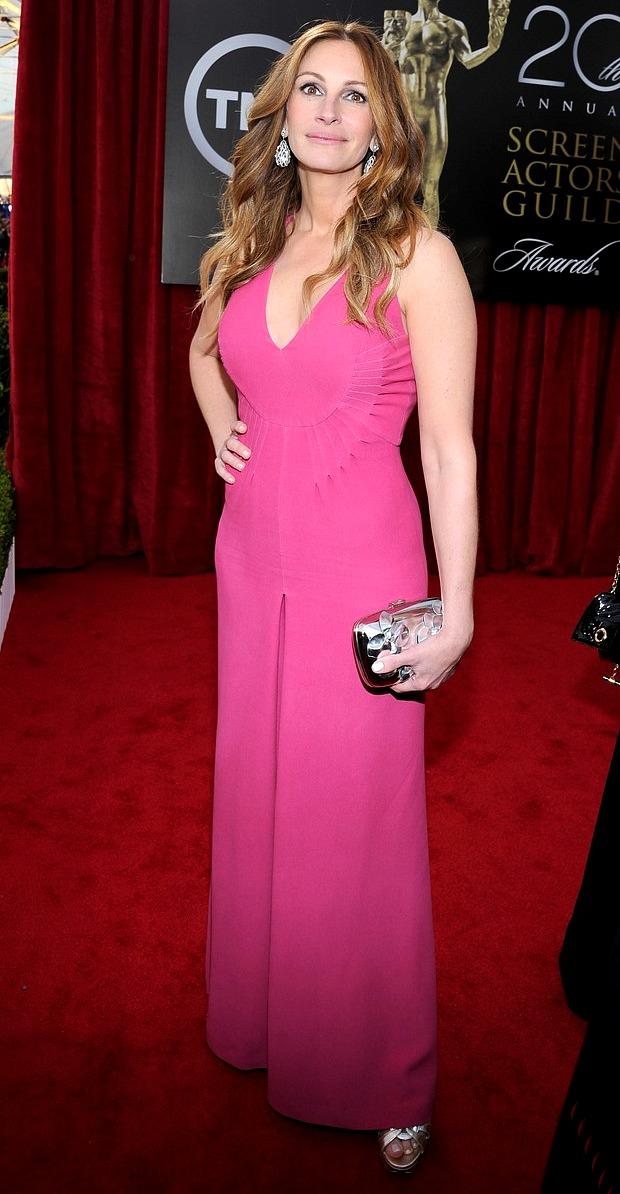 SAG Awards 2014 Julia Roberts 4