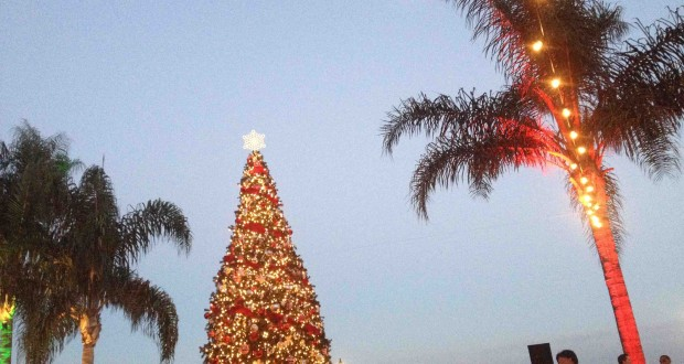 Tca hallmark channel delivers christmas in july for Hallmark channel christmas in july