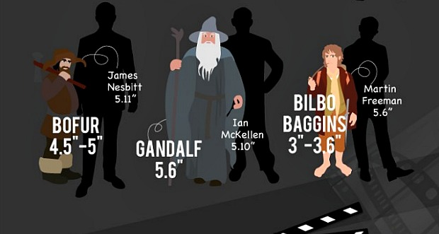 Who's Taller - Harry Potter or Daniel Radcliffe? Check the ...