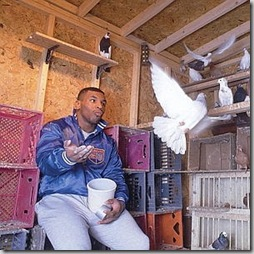 mike-tyson-pigeons