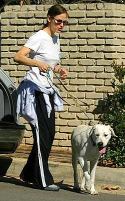 Jennifer Garner and dog Martha Stewart