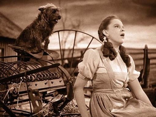 Judy Garland And Toto Somewhere Over The Rainbow Reel Life With Jane