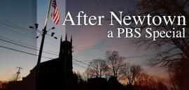 PBS: After Newtown