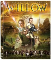 Willow 25th Anniversary