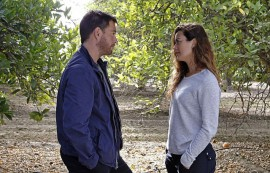 NCIS: Past, Present and Future