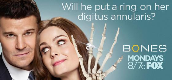 rs_560x261-131002123344-1024.bones.cm.10213_copy