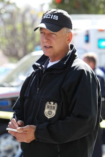 NCIS Alleged