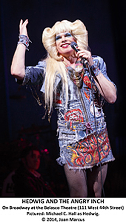 "Hedwig & the Angry Inch Belasco Theatre Michael C. Hall (""Dexter"") stars in this landmark, wickedly funny and heartbreaking rock musical about a transgender singer's quest to find her other half. Also starring Lena Hall."