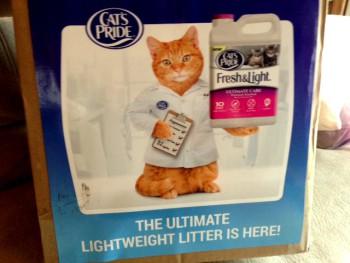 Cats Pride Box