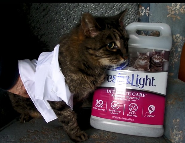 That Time We Tried To Put A Tiny Lab Coat On Our Cat