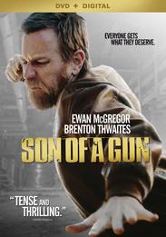 Son of a Gun Small