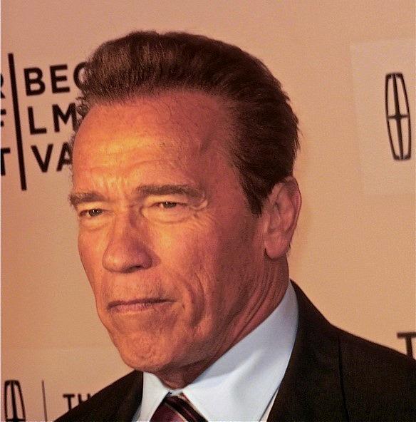 "Arnold Schwarzenegger at Tribeca Film Festival screening of ""Maggie"" | Paula Schwartz Photo"