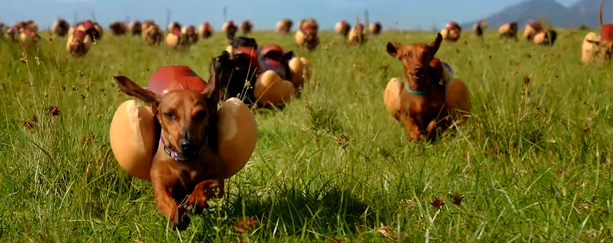 Super Bowl Commercials - Heinz Wiener Dogs Stampede