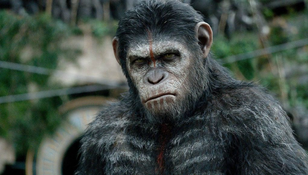 war for the planet of the apes, dawn of the planet of the apes, planet of the apes, fox